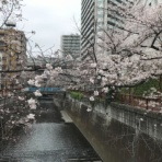 令和2年度東京大学運動会漕艇部