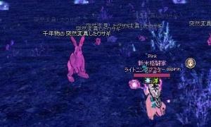 シリエン史上最大のウサギ?