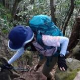 『岩屋山の裏尾根を歩く』の画像