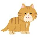 側溝に落ちた子猫を拾い上げたら、親猫が捧げものを玄関に置いて行くようになった。その衝撃の内容が…