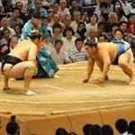 大相撲協会「ヒアリが危険なのではだし禁止」