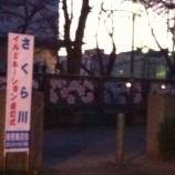『本日、笹目神社横で美笹商店会イルミネーション点灯式開催です。』の画像