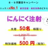 『ニンニク注射【特別キャンペーン】』の画像