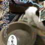 【8コマ】猫たちが喜ぶと思って買ったアレ。