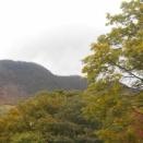 標高1,100m横倉山迄紅葉が降りて来ました!!!!