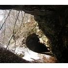 『落葉の山』の画像