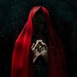 『 シャーマン 4 精霊の歌とおまじないの歌』の画像