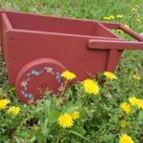 『花いっぱい・多頭飼育崩壊支援のお願い』の画像