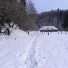 『毛無山(1218m)-白馬山(1050m) 縦走 Feb.8.2011(Tue)』の画像