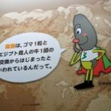 『家族で岐阜旅行に3泊4日で行ったので費用、宿、スポットをまとめる』の画像