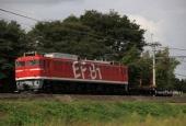 『2020/9/29運転 EF81-95牽引チキ6016廃車配給』の画像