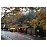 『秋の京都…。』の画像