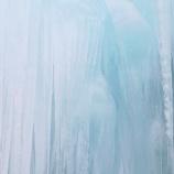 『樹氷:触処清涼 』の画像