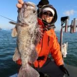 『1月4日 釣果 スーパーライトジギング SLJとロック 』の画像