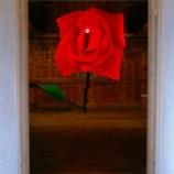 『『エローズ 〜蔵の中〜』』の画像