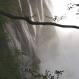 『台風後の渓流』の画像