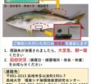 【緊急指令】長崎大学が行方不明のブリを探しています / 記録計がついたブリを発見した人は至急連絡を