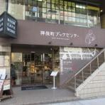 江戸川の畔(ほとり)