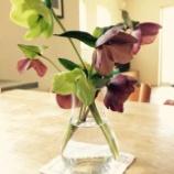 """『毎日に小さな""""うれしい""""を。花のある暮らし。』の画像"""