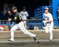 阪神の岩崎、先発再挑戦…力強い投球4回1失点