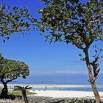 知床と八重山の風景