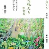 『花の瞑想「光の魂たち 植物編」より』の画像