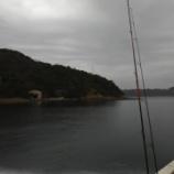 『初釣りがイワシだけ!ってのもな~ 笑 鳴門ウチノ海(2021/1/16)』の画像