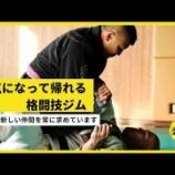 『元気になって帰れる格闘技ジム』の画像