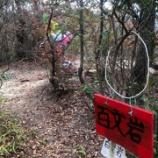 『201113 百丈岩登攀計画』の画像
