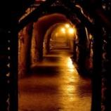 『【蔵元見学】栃木・島崎酒造の戦車工場跡の酒蔵』の画像