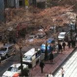 『(番外編)桜咲く!日本橋』の画像