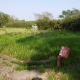 『九十九里町作田  小屋用地として再利用される旧分譲地』の画像