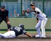 【阪神】上本が初の一塁「出来る状況あれば広がる」監督