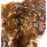 『「大食館パート4、佐野市グルメ」』の画像