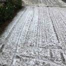 今日は雪だよ!