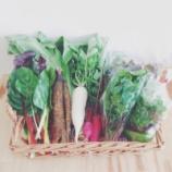 『無農薬野菜』の画像