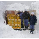 『雪中貯蔵しました』の画像