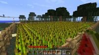 牧場の小麦畑を拡張