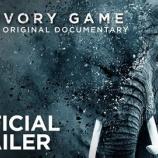『ゾウの映画』の画像