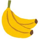 『バナナ「栄養あります、安いです、美味しいです」←こいつの弱点』の画像