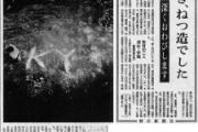 【KY】朝日新聞ってサンゴの記事、どんな気持ちで書いてるの?