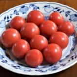 『国東の食環境(157)塩トマト』の画像