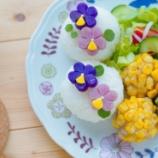 『紫とピンクのジャガイモで作るお花のおにぎりランチ』の画像