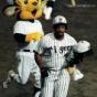【MLB】MLB通算319発フィルダー氏、転機は阪神時代「日本でプレーして自信ついた」
