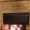 【イヌ】 暖炉に火を入れた。心も体もポッカポカ♪ → 2匹の犬はこうなった…