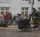 【画像】デンマーク王太子、デンマークとオーストラリアの交通規則の違いで罰金を払う事に