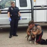 『ホームレスの男性と飼い犬が感動の再会』の画像