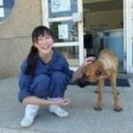 【悲報】700匹の犬を処分した女性、動物保護団体に叩かれて自殺する…