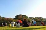 『天の川七夕まつり』をざっくりとご紹介!~駅前公園、植物園、スポレクの3会場でお祭りだ!~