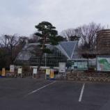 『2月の都立薬用植物園』の画像